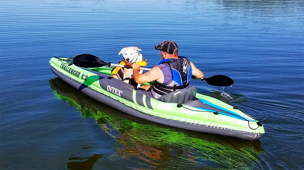 Review of the Top Five Kayak for Dog